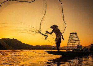 By 2048 There Might not be Any Fish Left in Asia