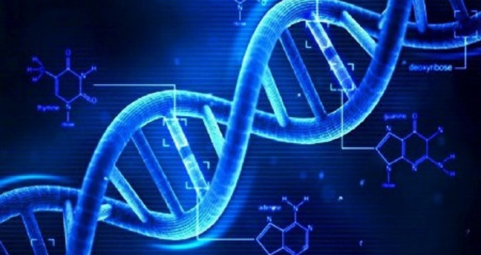 The Gene That Causes Autism Has Been Discovered
