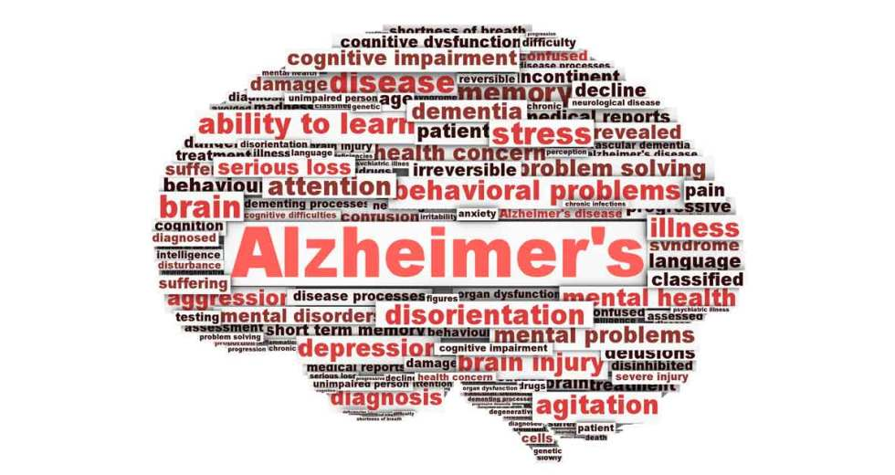 Do we Really Know What Causes Alzheimer's?