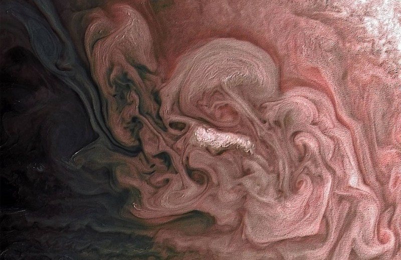 NASA Has Recently Shared An Image Of A Pink Storm On Jupiter