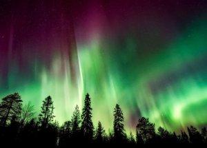 Electric Blue Auroras Embellish the Sky