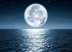 The Moon's Influence On The Life On Earth – Between Myth And Science