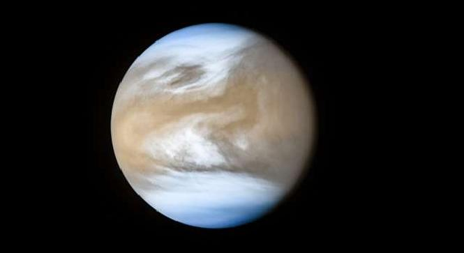 Venus Atmosphere Can Hold Microbial Life
