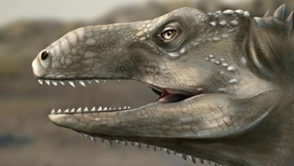 A New Prehistoric Reptile Species That Lived About 240 Million Years Ago Has Been Unearthed