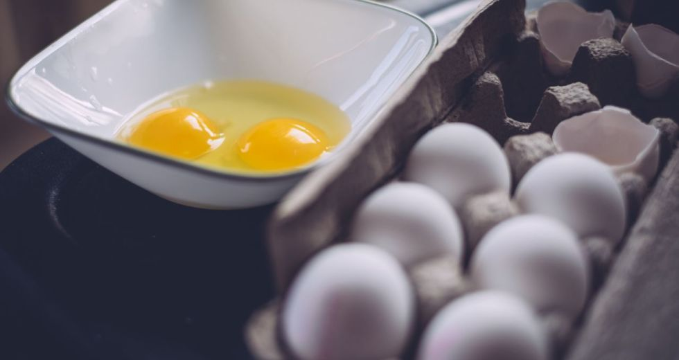 Salmonellosis – How To Avoid Contracting Salmonella?