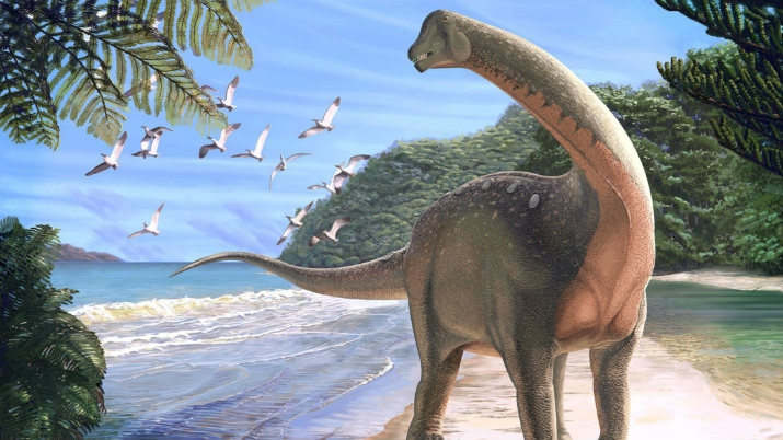 Breakthrough Discovery May Change Perception about Longneck Dinosaurs