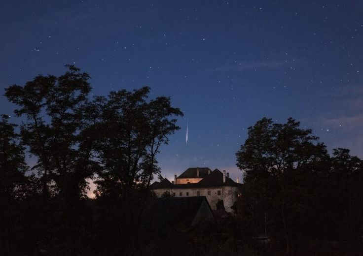 Witness the Spectacular Perseid Meteor at the Kerry Wood Nature Centre