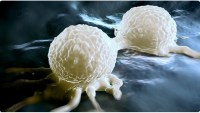 Breast Cancer Survival Rates Extended With Two New Drug Combinations