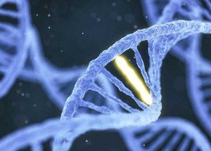 Child Abuse Leaves Traces in Victims' DNA, According to A New Study