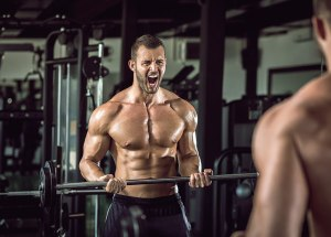Fitness Protein Supplements Might Also Build Fat Mass, Along With Muscle