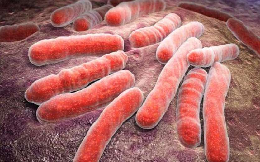 New Canadian Study Came Up With New, More Effective Drugs For Multidrug-Resistant Tuberculosis
