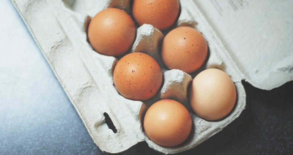 Daily Eggs Consumption Is Beneficial For Health