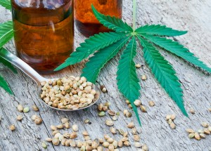 Cannabidiol (CBD) Might Increase Ocular Pressure, New Study Showed