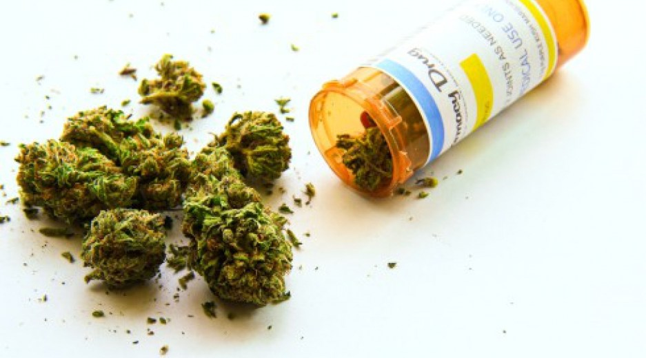 Medical Marijuana Could Effectively Substitute Opioids