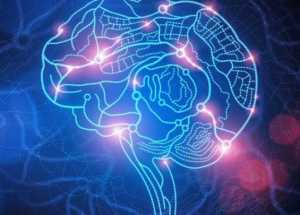 Scientists Might Have Identified The Brain Patterns of Human Consciousness