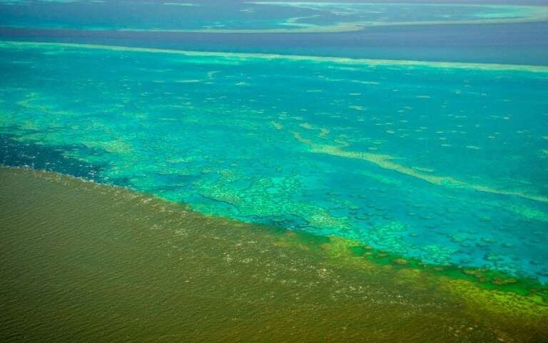 Floodwater Might Endanger The Great Barrier Reef