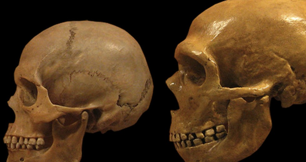 Ancient Human Fossil Suggests That The Ancestor Of Modern Humans Did Not Emerge In South Africa