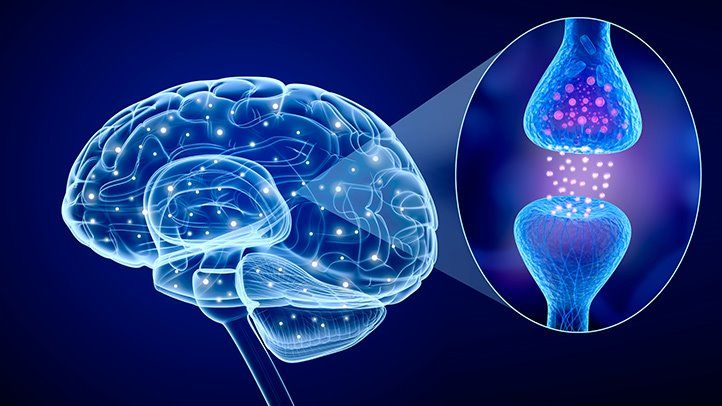 High Serotonin Levels Could Be Linked To Autism, Studies Show