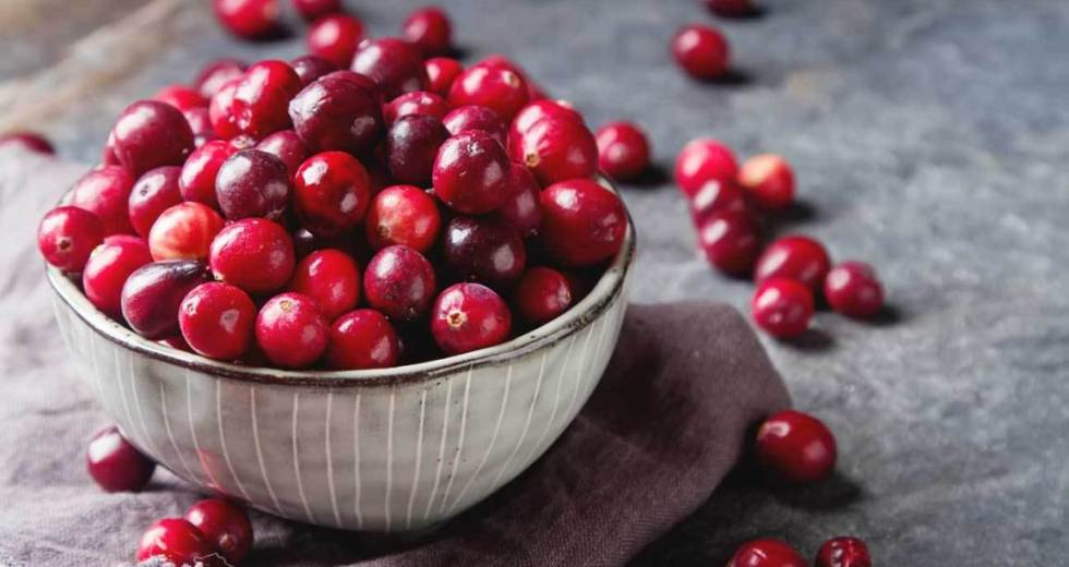 Cranberry Extract Fights Antibiotic-Resistant Bacteria, New Research Finds Out