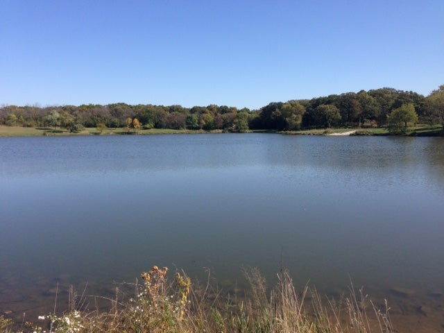 Killing Amoeba from the Freshwater Lakes