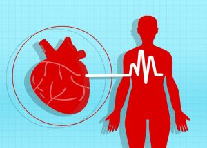 Hypertension During Middle-Age Might Lead To Brain Shrinkage