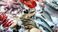 Seafood Contains High Level Of Toxic Substances As A Result Of Climate Change