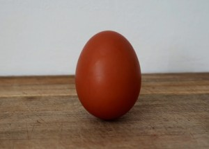 An ode for the egg – Why are eggs healthy?