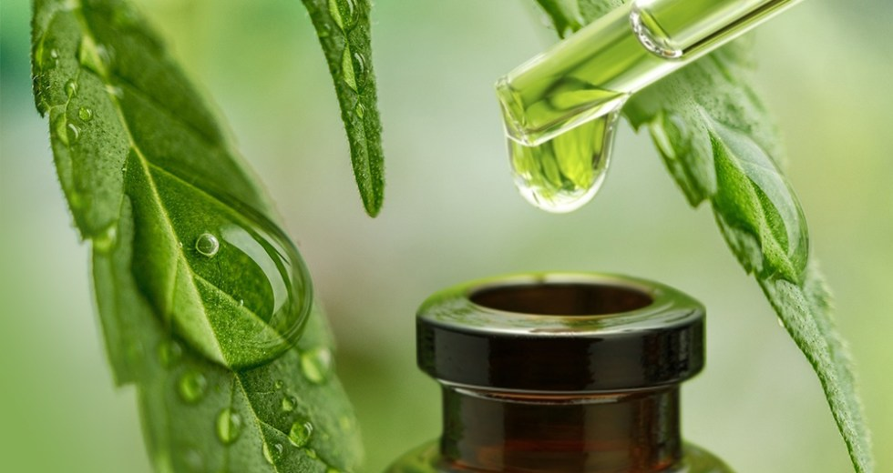 Cannabidiol: The Ins and Outs