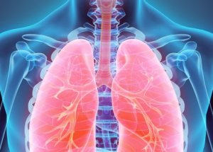 Top 5 Nutritious Foods for Healthy Lungs During the COVID-19 Pandemic