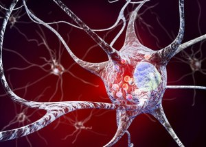 Parkinson's Disease: Scientists Spotted A New Risk Gene