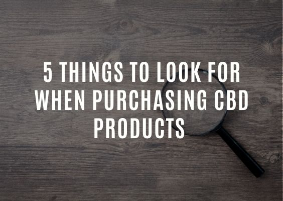 5 Things to Look for When Purchasing CBD Products