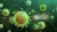 Feces: The Key to Controlling COVID-19