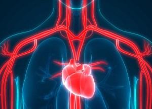 Sleep and your Heart Health