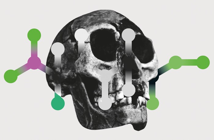 Revealing Ancestry In The Evolution Of Homo Sapiens – The Origins Of Our Species!