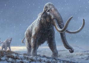 World's Oldest sequenced DNA Comes From Ancient Mammoths!