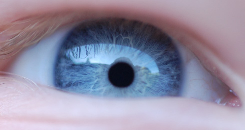 Should You Worry About Flashes of Light in the Eye and Visit an Eye Doctor?