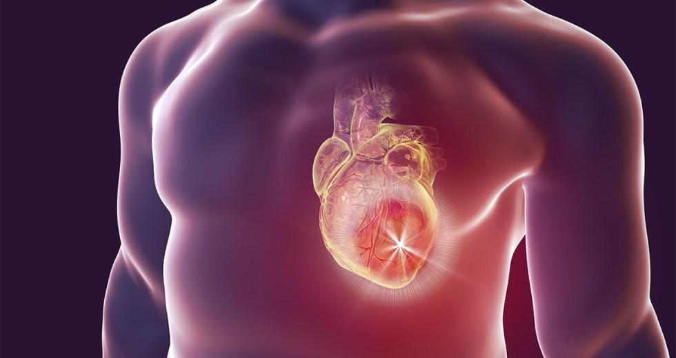 Myocarditis Appears for Young People After COVID-19 Vaccination and the US Starts Investigation – Should We Worry?