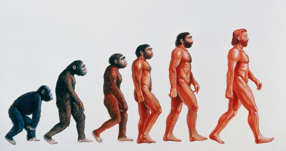 Newfound Type of Prehistoric Human Leaves Scientists Speechless