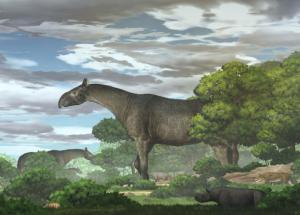 Palaeontologists Discover the Largest Land Mammal That Ever Existed