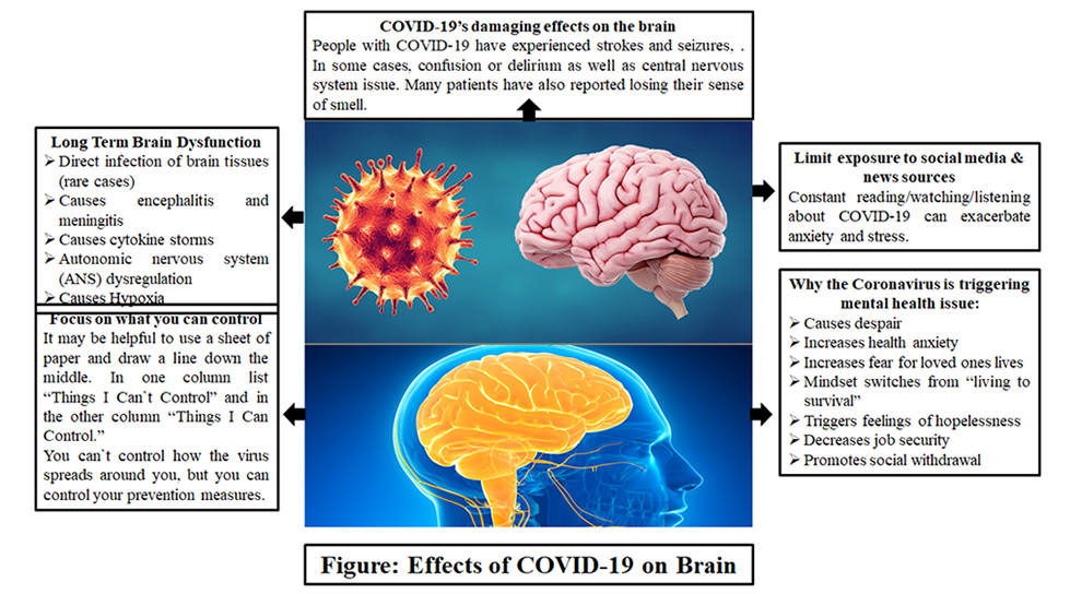 Effects of covid-19 on the brain