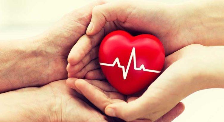 Heart Attack and Sudden Cardiac Arrest