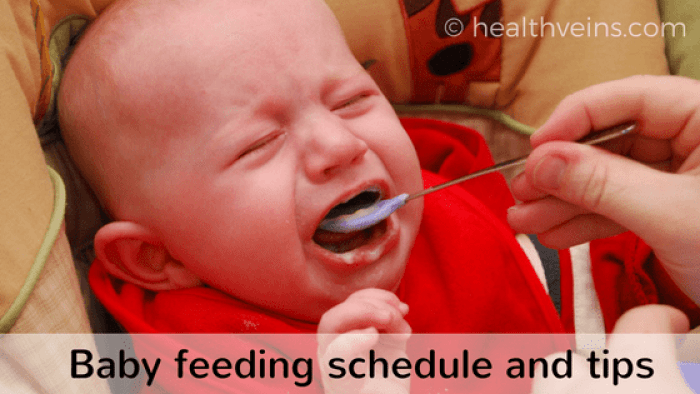 newborn feeding schedule chart