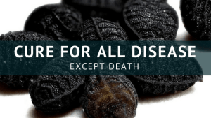 cure for all diseases except death
