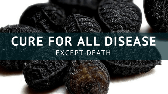 Cure For All Diseases Except Death | Say Bye to STDs, Cancer, Diabetes, Stroke, Arthritis & More
