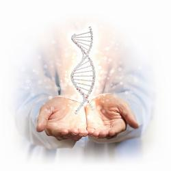 DNA personalized healthcare