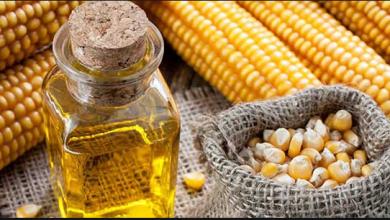 Photo of الفوائد العجيبة لزيت الذرة للبشرة والشعر