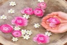 Photo of أهمية ماء الزهر من أجل الحفاظ على صحة الجسم والبشرة