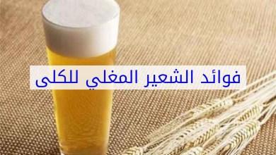 Photo of استخدام الشعير للتخلص من أمراض الكلى