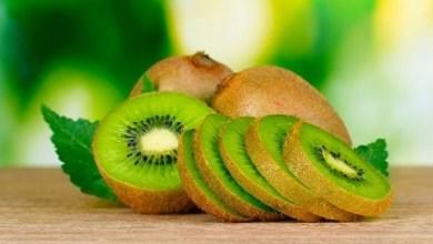 Photo of اهمية فاكهة الكيوي في حرق الدهون