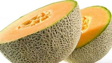 Photo of فوائد البطيخ الأصفر